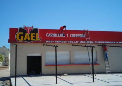 ACRILICO - GAEL 3